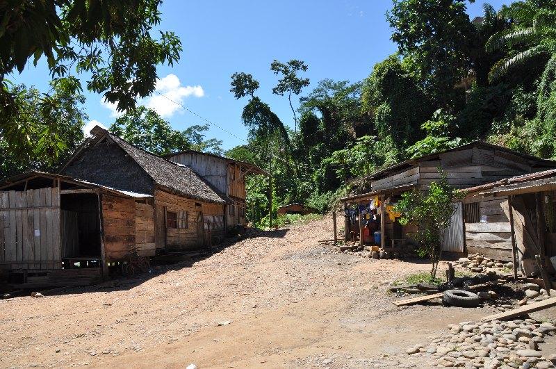 Dorf im Dschungel