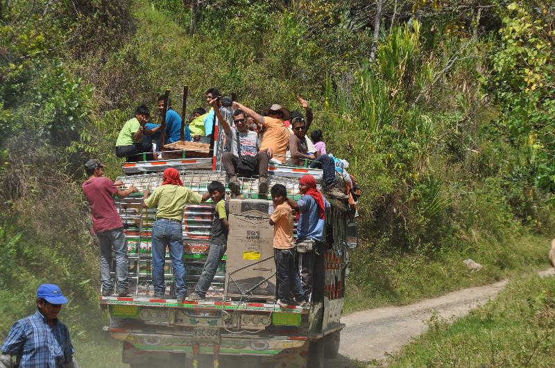 Bus im Dschungel