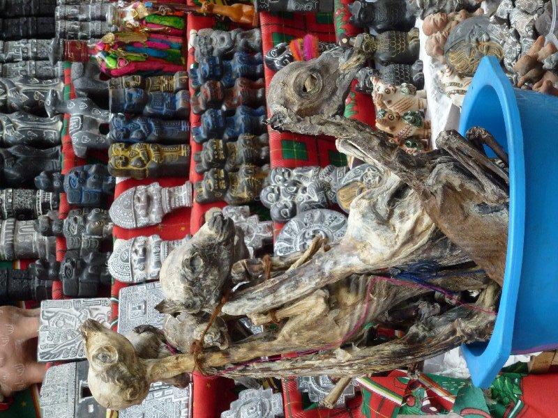 Lama Föten in La Paz am Hexenmarkt