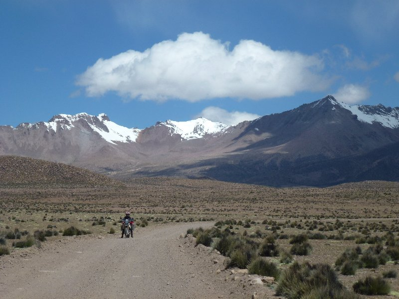 Lauca Nationalpark