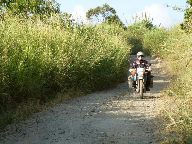 Motorrad im Gras