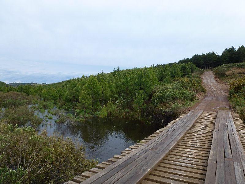 typische Holzbrücke