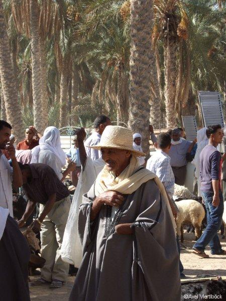 Viehhändler in Douz