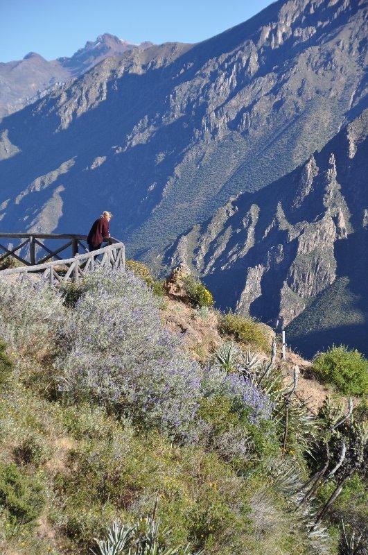 MIrador del Cura im Colca Canyon