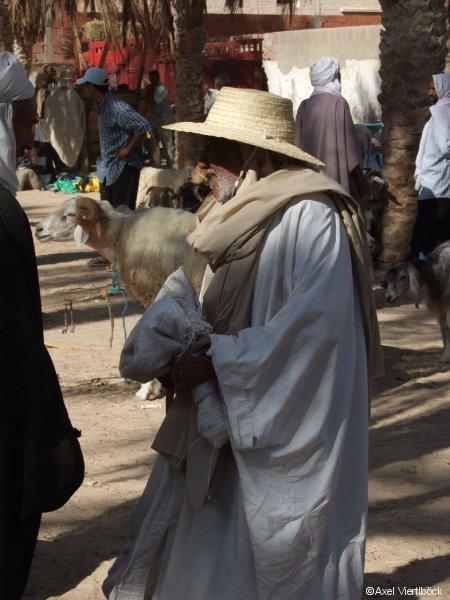 Händler am Viehmarkt in Tunesien